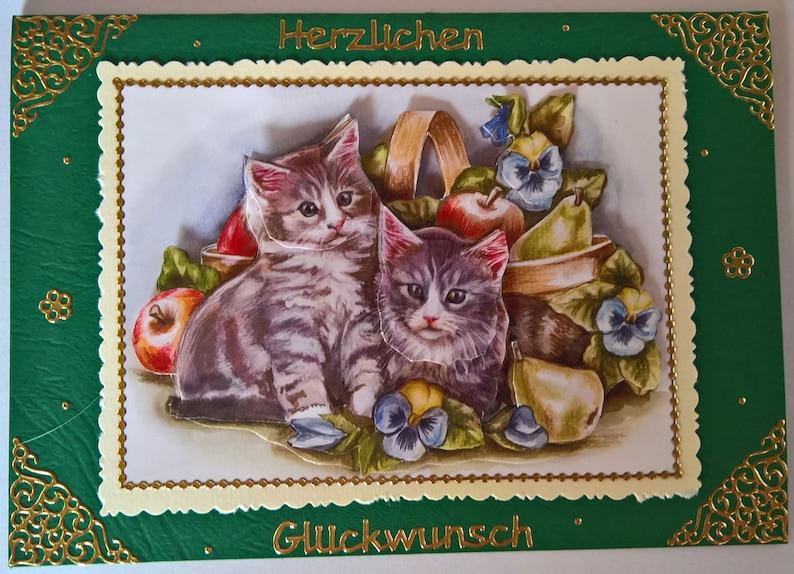 Geburtstagskarte mit zwei Katzenbabys