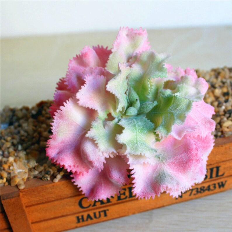 Artificial Succulents,Faux Succulents,Imitation Succulents,Succulent Cutting,Succulent Planters,Miniature Garden,DIY Floral Arrangements,F55