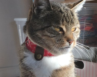 GentleCat©-Safety Collar for Cats – custom made