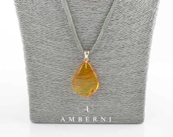 Baltic amber pendant, Amber pendant Insect, Amber pendant, Amber shop, 7767