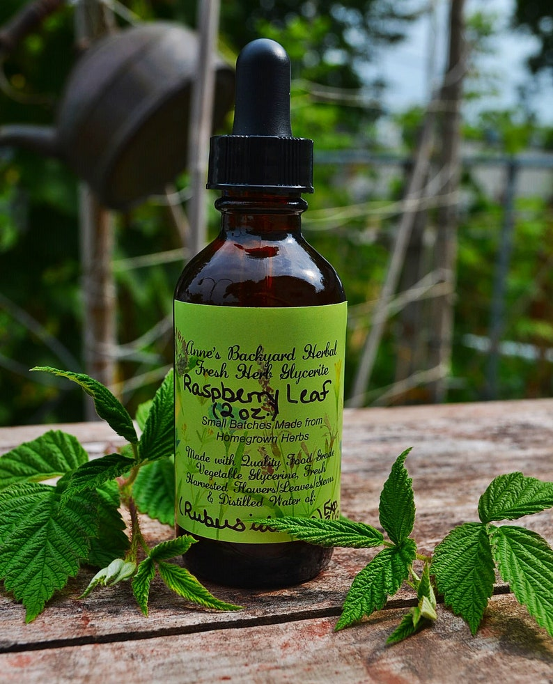 Raspberry Leaf Herbal Glycerite Rubus Idaeus for Wellness image 0