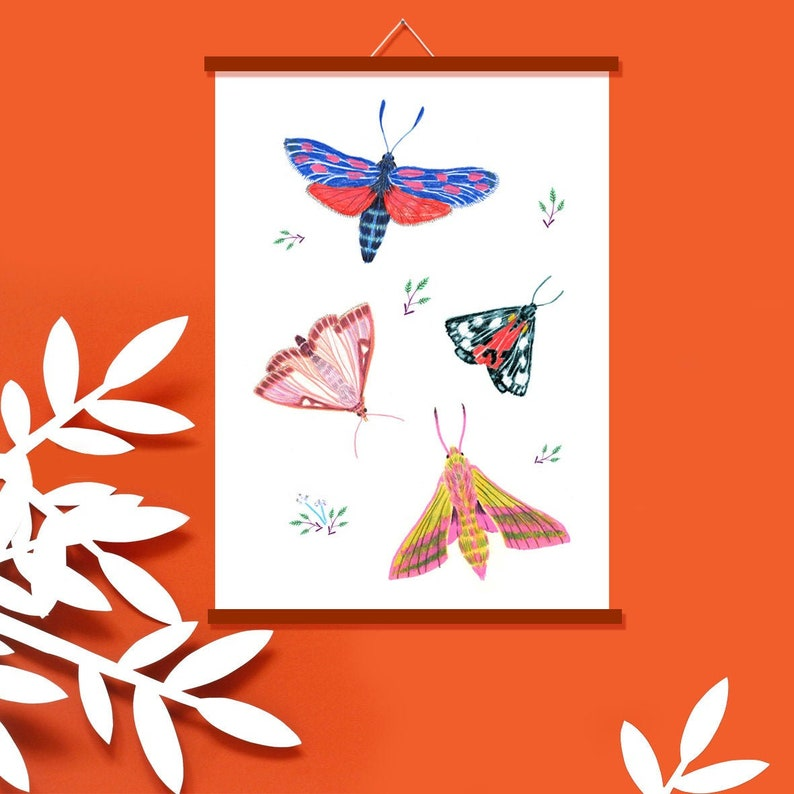 Poster Butterfly  Art Print Moth  Spring Decoration  Wall image 0