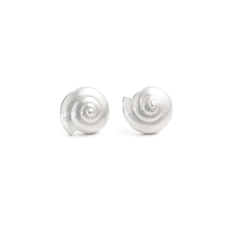 earrings: studs nautilus shell  silver image 0