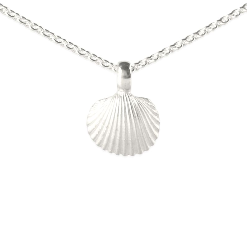 necklace with pendant: sea shell  silver image 0
