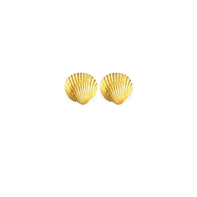 earrings: studs sea shell  18k gold image 0