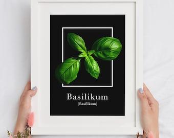 Sage, Basil, Rosemary, Mint, Artichoke - Art Print - Herbs/Kitchen - Black Edition