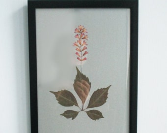 Botanical art, collage with leaf and flowers, pressed flowers, flowers art, glowering currant, art with real flowers