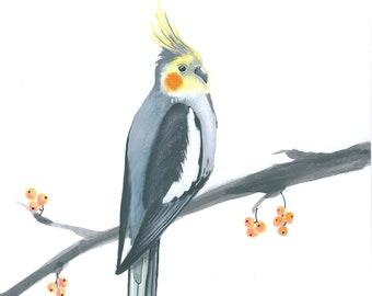 Art print with cockatiel, bird portrait, bird art, printed art, bird art japanses style
