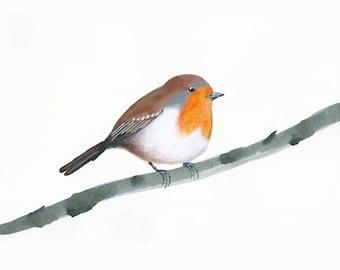 Art print with robin on branch, bird portrait, art with a bird on a branch, bird art, printed art, english birds