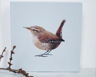 Birds painted on wood: Wren