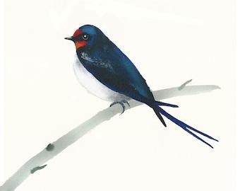 Art print with swallow, birds of the UK, bird art, printed art with birds