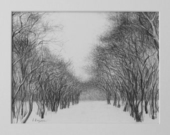 Forest Scenery Pencil Drawing