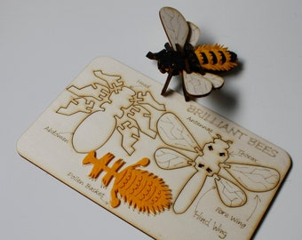 Slot Together Brilliant Bee Kit, Craft kit for kids and adults, Build a bee activity, wooden craft gift, letterbox gift,