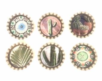 Southwestern Magnets   Desert Cactus Magnets   Decorative Magnets   Fridge Magnets   Kitchen Magnets   Succulent Decor   Magnets for Boards