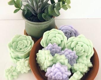 Mini Succulent Soap Gift Set  (Includes cotton bath tea bag)