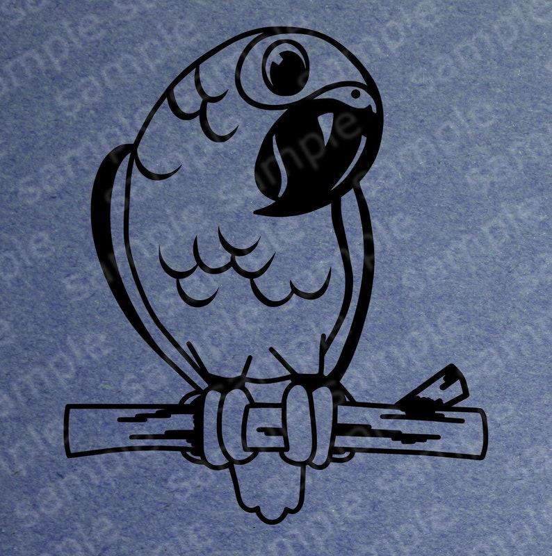 African Grey Gray parrot Digital Svg Cricut cutting file Great Tshirt design,design your own logos cute parrot
