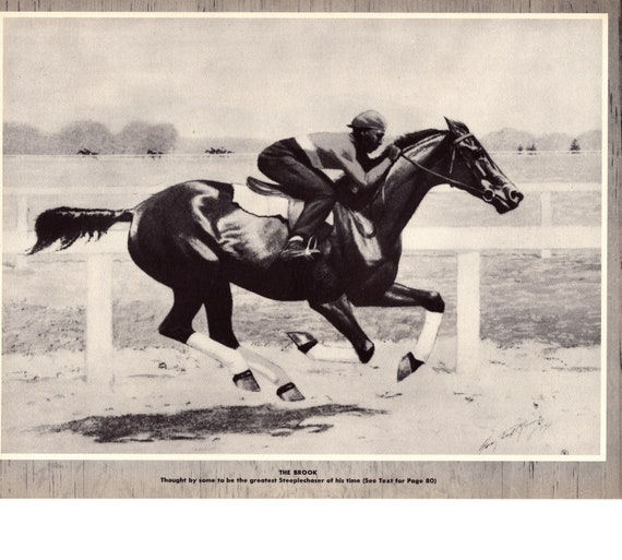 2bbc0e8978c Horse Racing Print The Brook-Steeplechaser Champion Stallion | Etsy