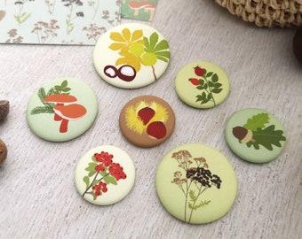 "Magnetset ""Herbst"", 7x Kühlschrankmagnet mit floralen Motiven [linava]"