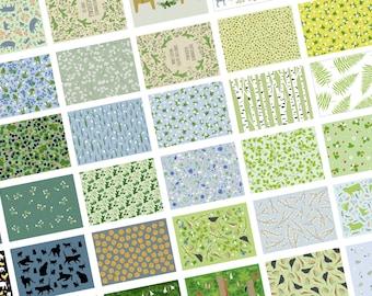 10 Karten selber mixen (Postkartenset mit 10 A6-Karten nach Wahl selbst zusammenstellen) linava