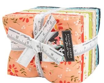 Walkabout Fat Quarter Bundle by Sherri & Chelsi for Moda