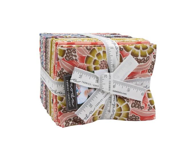 Winkipop Fat Quarter Bundle by Jen Kingwell for Moda