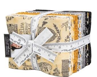 FREE SHIPPING Bee Joyful Fat Quarter Bundle by Deb Strain for Moda