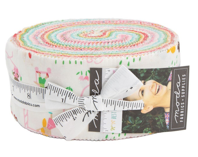 Best Friends Forever Jelly Roll by Stacy Iest Hsu for Moda
