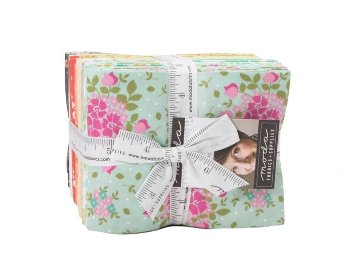 Canning Day Fat Quarter Bundle by Corey Yoder for Moda