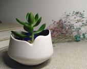 Gardening Gift, Modern Planter, Modern Home Decor, Succulent Pot, Desk Planter Pots, Small Planter, Ceramic Planter, Plant Pot, Plant Holder