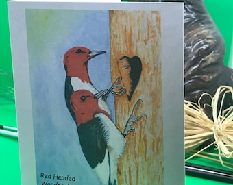 Note cards Red Headed Woodpecker | Illustrated Hand Water colored Blank Notes | Bag of 10
