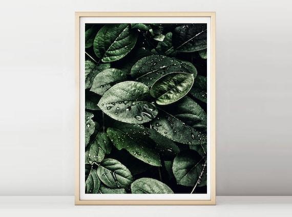 Art, impression grand format, impression, feuilles, nature, vert, affiches, décoration murale, banderoles, impression, forêt