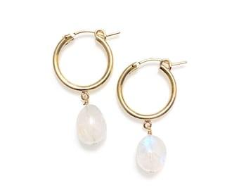 Rainbow moonstone hoop earrings (14K gold-filled)