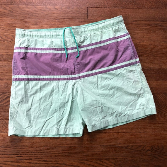 Animal Otter Mens Board Shorts Swim Mesh Lining and Side Pocket