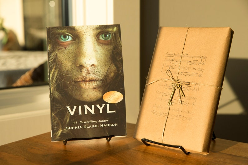 VINYL: Book One of the Vinyl Trilogy image 0