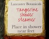 NEW! 3 Tangerine Shower Steamer // Vegan // Small Batch // Essential Oils // Citrus // Orange // Mini Bath Bombs // Pick Me Up // Wake Up