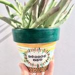 Choose Joy, Hand Painted, Terra Cotta, Succuleny, Succulent Planter