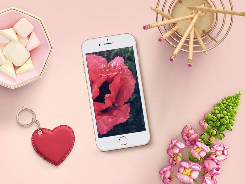 Cell Phone Wallpaper Fiori Di Papavero Rosa Iphone Sfondo Etsy