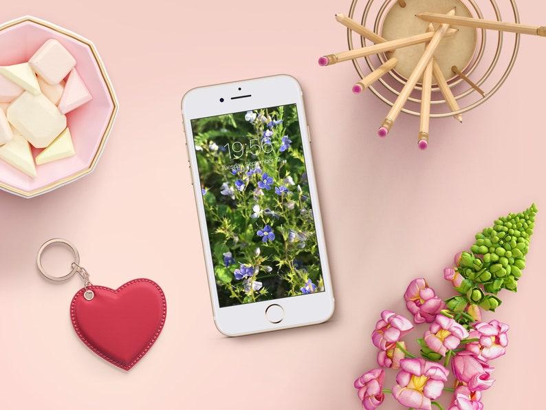 Cell Phone Wallpaper Fiori Blu Iphone Sfondo Screensaver Etsy