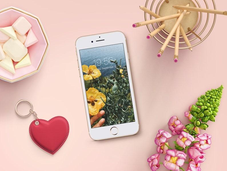 Cell Phone Wallpaper Fiori Gialli Iphone Sfondo Screensaver Sfondo Smartphone Wallpaper Per Il Cellulare Schermata Di Blocco Del Telefono