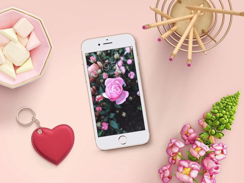 Sfondi rose per smartphone