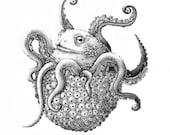 Toad/Poulpe Chimera - Digital Printing