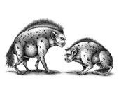 Spotted hyena - Digital printing