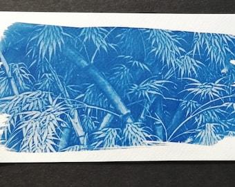 Postcard Bamboo