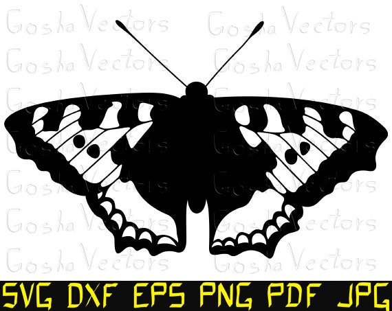 picture regarding Papilio Printable Vinyl named Butterfly svg. Slicing report template, Cameo, Cricut, t blouse, vinyl decal, DXF, clipart, silhouette, vector, printable, engraving.