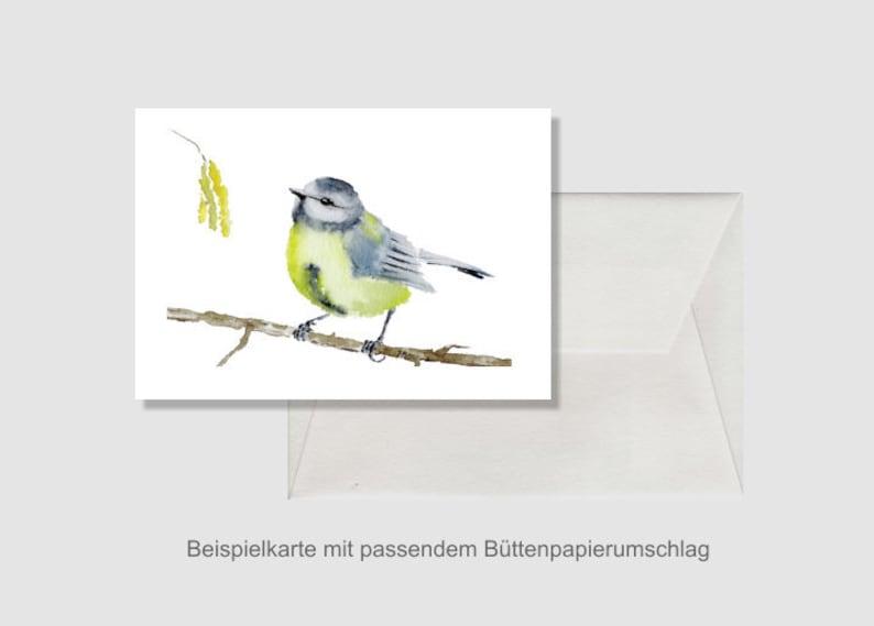 Art card including album envelope Fine Art Print Small Meise