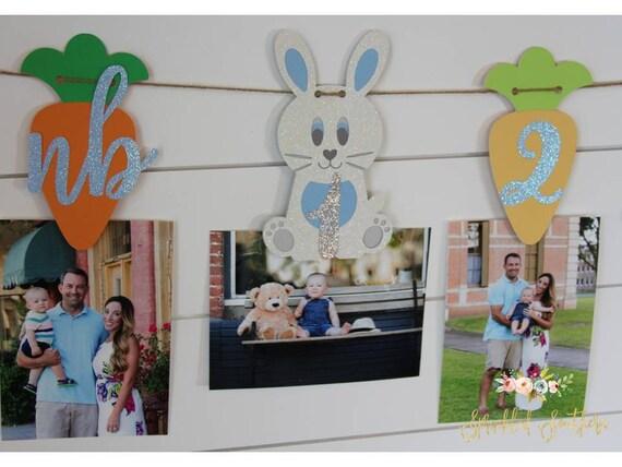 Boy Bunny Newborn to 12 Month Photo Banner