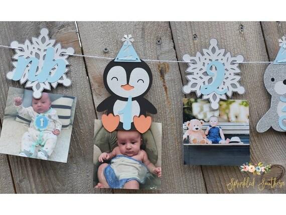 Arctic Animal Winter ONEderland Frozen Theme Photo or Picture Garland for Newborn-12 month- First Birthday