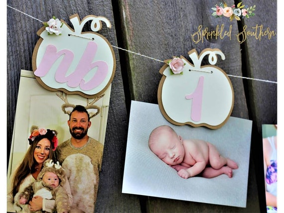 Little Pumpkin Photo Banner or Picture Garland with Flowers