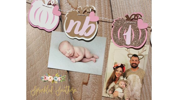 Little Pumpkin Girl or Boy Theme Photo Banner or Picture Garland for First Birthday