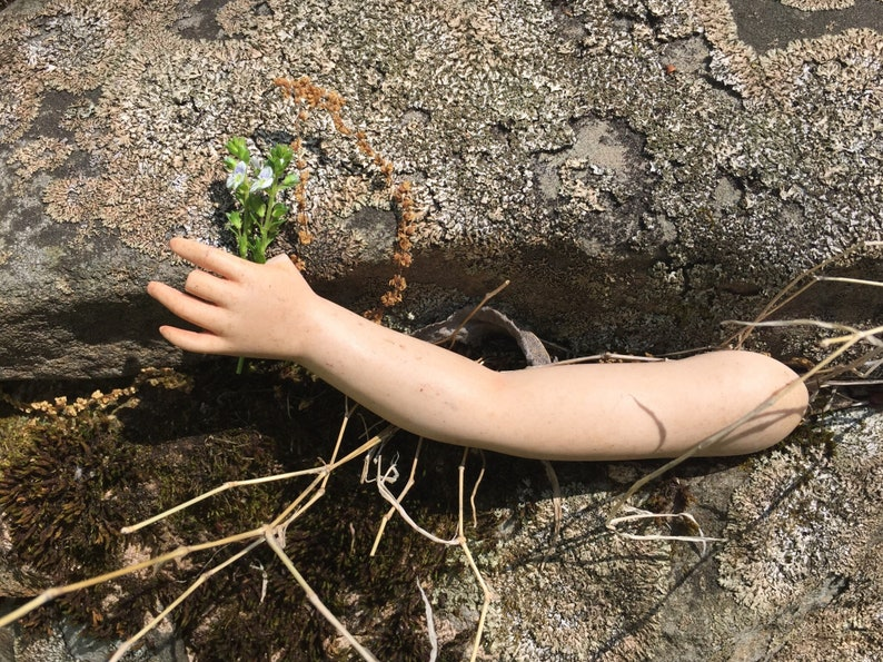 Stray Vintage Doll Arm Tlc Needed For Art Projects Oddity Shelf Curiosity Cabinet Etc